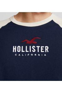 HOLLISTER California Tshirt Męski Haft Dwu Kolorowy
